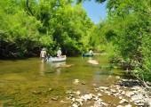 Excursiones de pesca en Termas del Arapey
